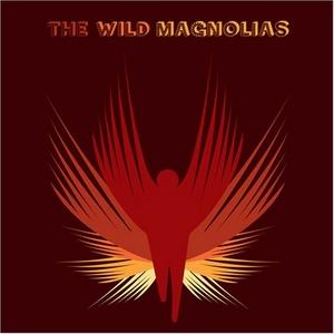 The Wild Magnolias~ They Call Us Wild album cover