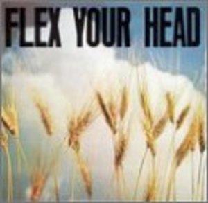 Flex Your Head album cover