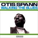 Walking The Blues album cover