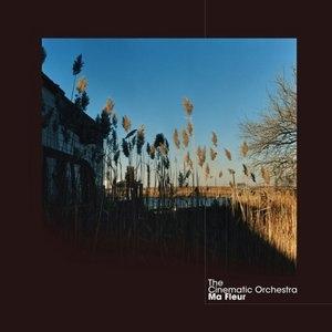 Ma Fleur album cover