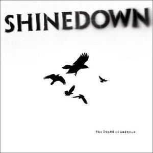 The Sound Of Madness album cover
