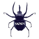 Saosin album cover