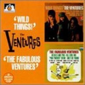 Wild Things-The Fabulous Ventures album cover