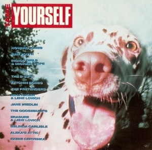 Tame Yourself album cover