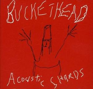 Acoustic Shards album cover