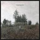 Saint Bartlett album cover