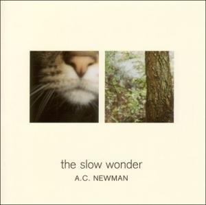The Slow Wonder album cover