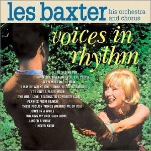 Voices In Rhythm album cover