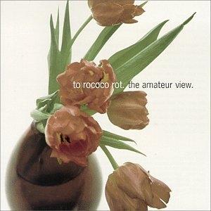 The Amateur View album cover