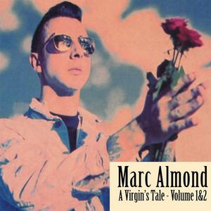 A Virgin's Tale Vol.2 album cover