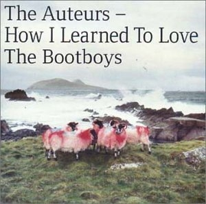 How I Learned To Love The Bootboys album cover