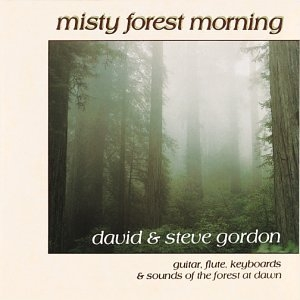 Misty Forest Morning album cover