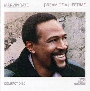 Dream Of A Lifetime album cover