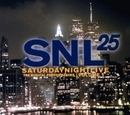 SNL 25:The Musical Perfor... album cover