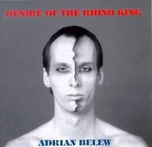 Desire Of The Rhino King album cover