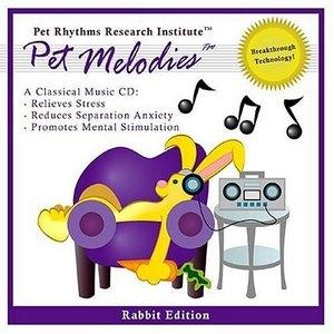 Pet Melodies: Rabbit Edition album cover