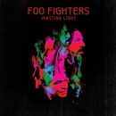 Wasting Light album cover