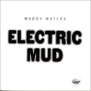 Electric Mud album cover