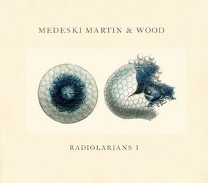 Radiolarians I album cover