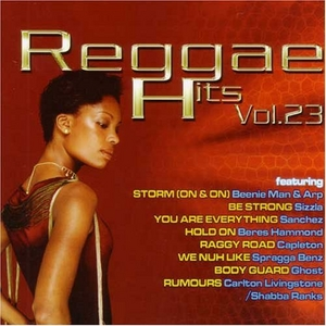 Reggae Hits, Vol. 23 album cover