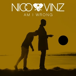 Am I Wrong (Single) album cover