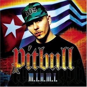 M.I.A.M.I. album cover