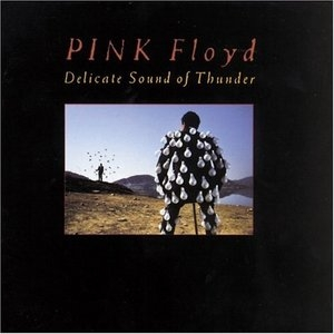 Delicate Sound Of Thunder album cover