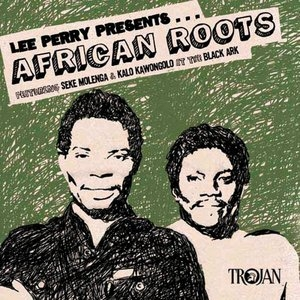 African Roots From the Black Ark album cover