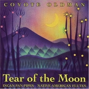 Tear Of The Moon album cover