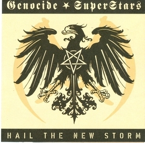 Hail The New Storm album cover