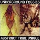 Underground Fossils album cover