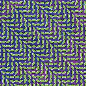 Merriweather Post Pavilion album cover