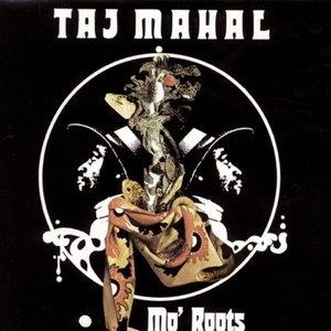 Mo' Roots album cover