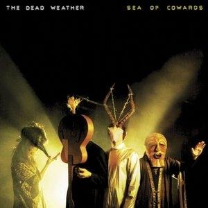 Sea Of Cowards album cover