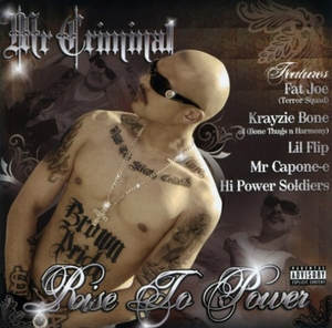 Rise To Power album cover