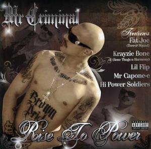 Rise To Power album cover
