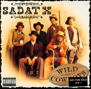 Wild Cowboys album cover