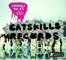 Catskills 1st XI: It's A ... album cover