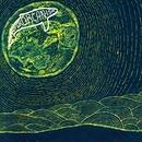 Superorganism album cover