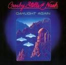 Daylight Again album cover