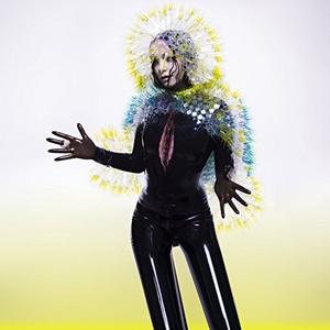 Vulnicura album cover