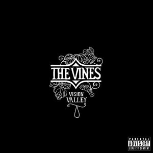 Vision Valley album cover