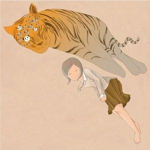 Sleepy Tigers album cover