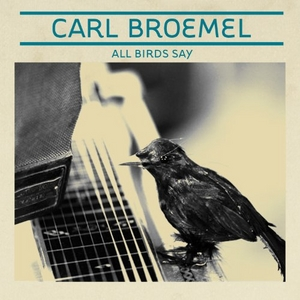 All Birds Say album cover