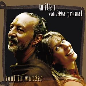 Soul In Wonder album cover