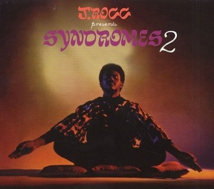 Syndromes 2 album cover