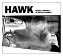 Hawk album cover