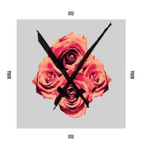 Nina album cover
