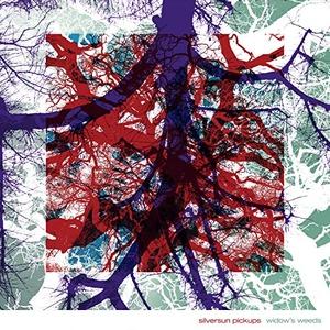 Widow's Weeds album cover