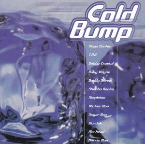 Cold Bump album cover